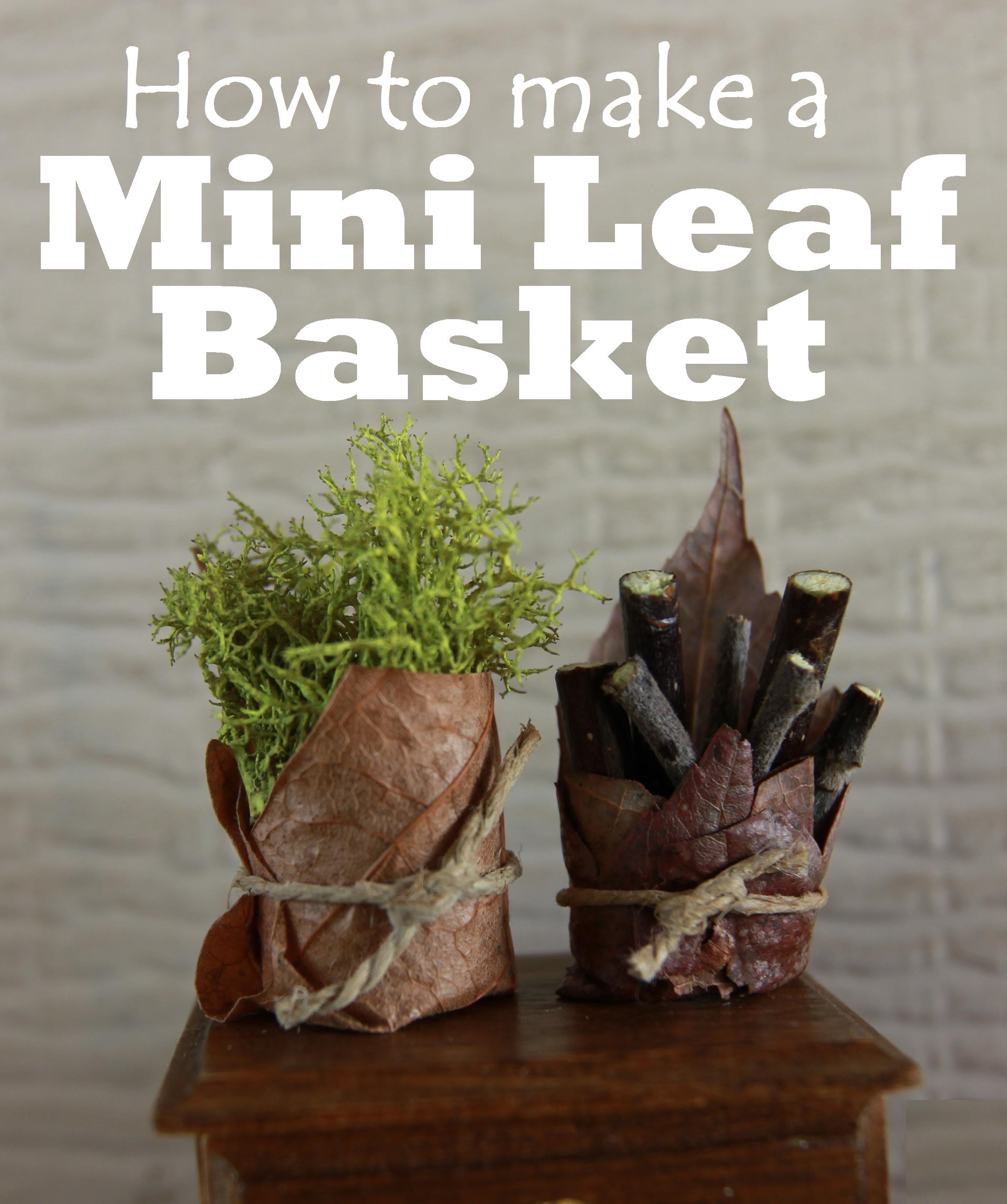 How To Make A Mini Leaf Basket Beneath The Ferns