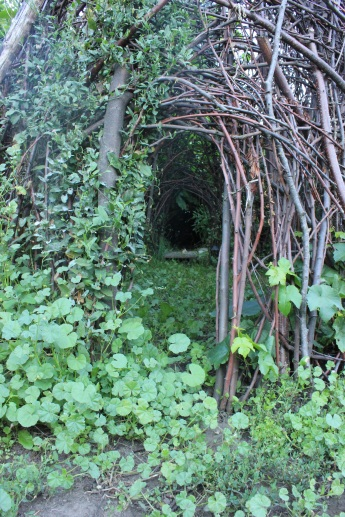 Fairy house garden woven structure #beneaththeferns #fairy #Faiiryhouse 15