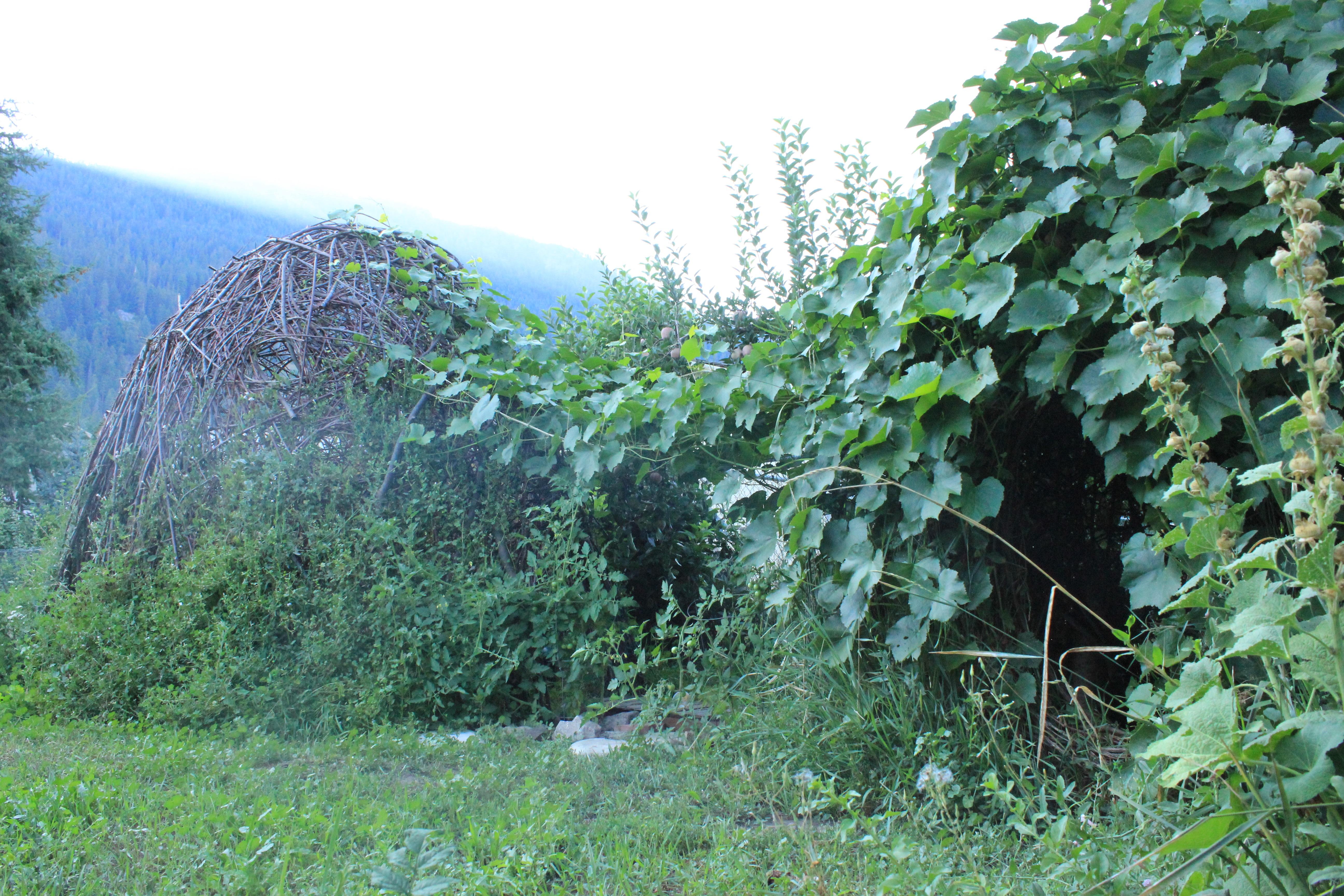 Fairy House Garden Woven Structure #beneaththeferns #fairy #Faiiryhouse 17