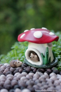 hedgehog Mushroom miniature house fairy garden accessory