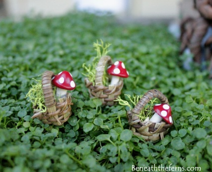 Fairy garden supplies miniature accessory 10