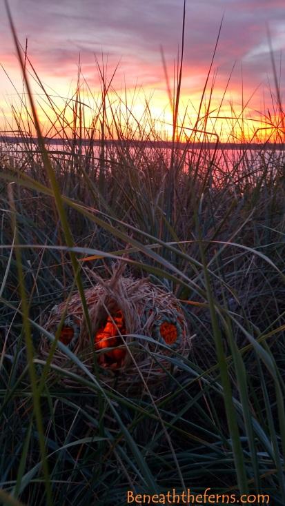 Sunset over fairy house beach fairies sculpture by beneath the ferns